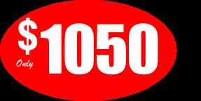 1050_Member_2021